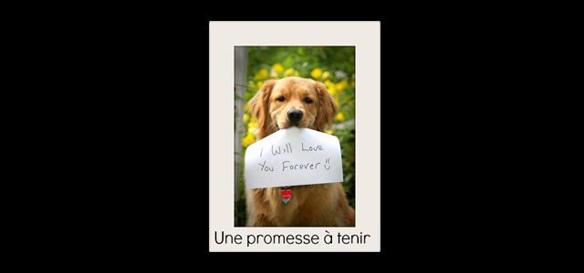 PROMESSE_A_TENIR