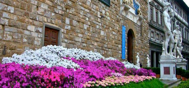 david-firenze-freya-fiori
